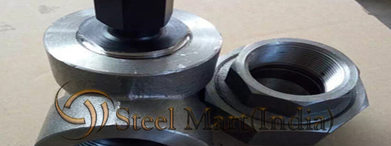 ASTM A182 Alloy Steel F22 Forged Fittings Manufacturers