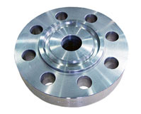 Titanium UNS R50400 Ring Joint Flanges